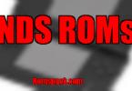 NDS ROMs